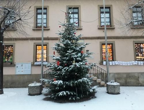 Wunderschöne Adventsfenster beim OV Gimbsheim