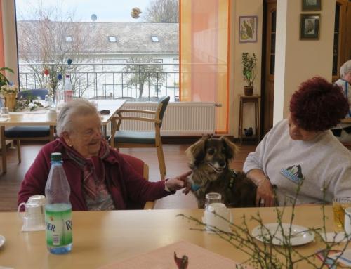 Tierischer Besuch im AWO Seniorenzentrum Kannenbäckerland