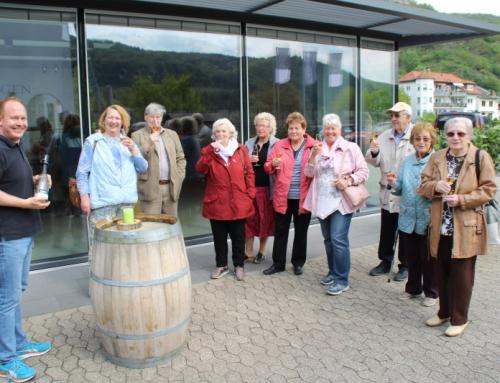 Wein Probe in Hammerstein