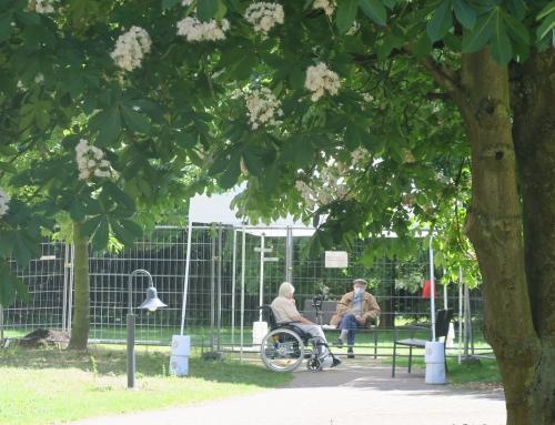 AWO Seniorenzentrum Neuwied: Besuchsmöglichkeiten drinnen und draußen